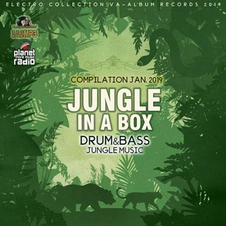 Jungle In A Box (2019)