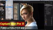 Capture One Pro 11. Популярные стили (2018) HDRip