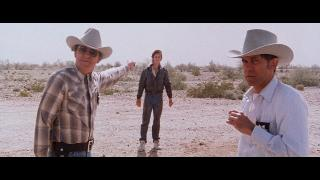 Попутчик / The Hitcher (1986) Blu-Ray Remux 1080p