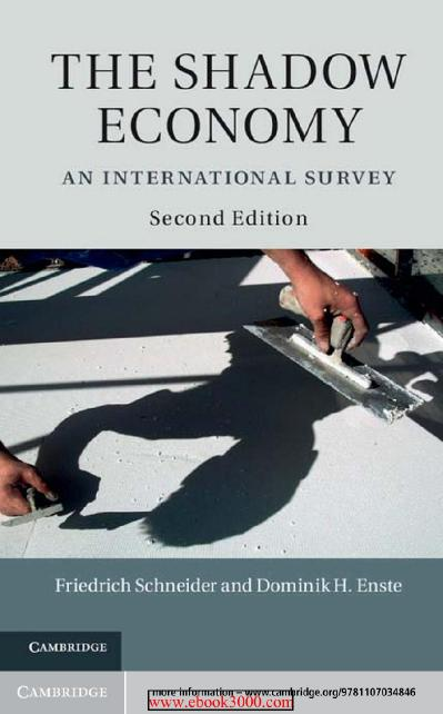 The Shadow Economy- An International Survey 2 edition