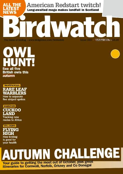 Birdwatch UK  October (2017)
