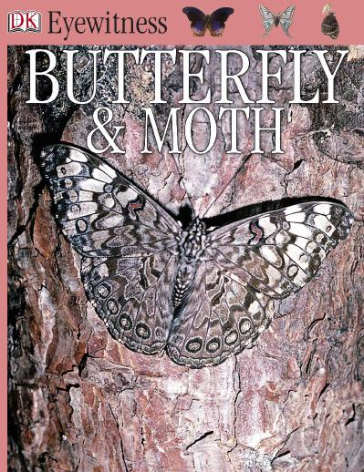 Eyewitness - Butterfly amp Moth Eyewitness Books