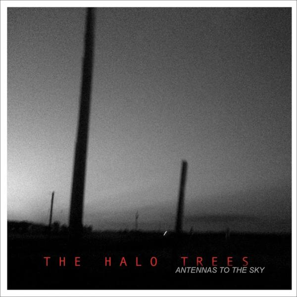 The Halo Trees Antennas To The Sky  (2019) Entitled
