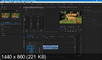 Adobe Premiere Pro CC 2019 13.1.3.42 Portable by punsh