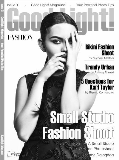 Good Light Issue 31 (2016)