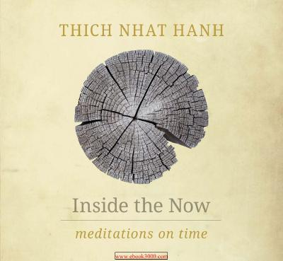Inside the Now Meditations on Time