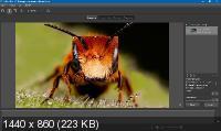 Helicon Focus Pro 7.5.6