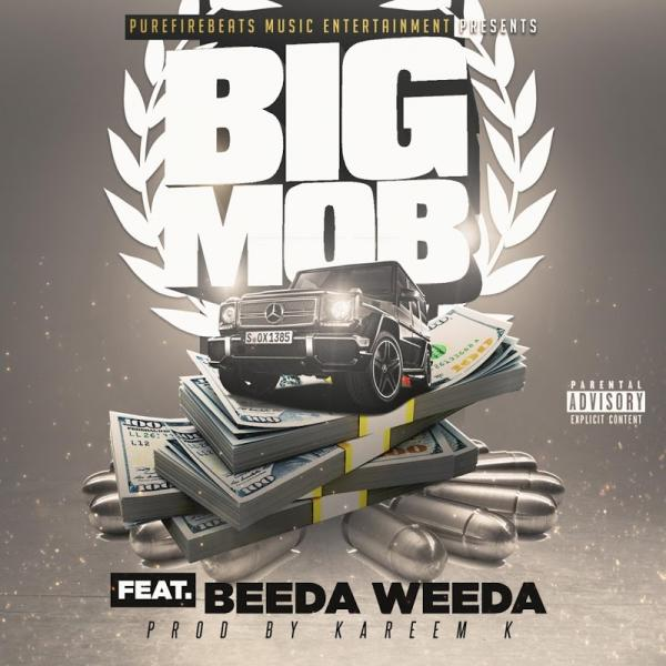The Mob Is Here Big Mob Feat Beeda Weeda Single  (2019) Enraged