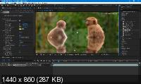 Red Giant VFX Suite 1.0.1