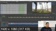Дмитрий Ларионов - Adobe Premiere Pro: секретные настройки (2019) Мастер-класс
