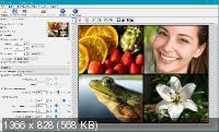 Benvista PhotoZoom Classic 8.0.4