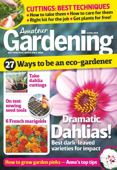 Amateur Gardening - 21 April (2018)
