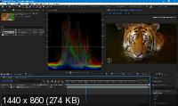 Adobe After Effects CC 2019 16.1.3.5 Portable by punsh