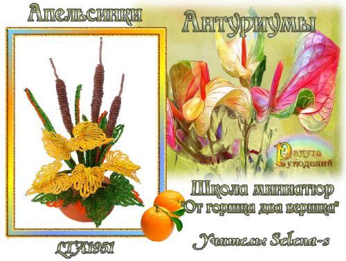 3-ая галерея.Антуриумы.Апельсинки 303b78d5aa925b95face7f0d1f1e2a1f