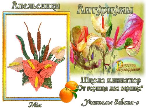 3-ая галерея.Антуриумы.Апельсинки Edea0b6693451516f5733f664f126621