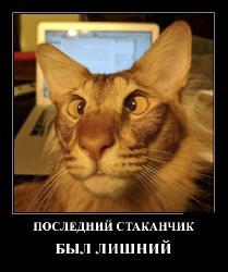 Подборка лучших демотиваторов №449