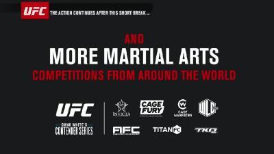 UFC Fight Night 162 WEB-DL H264 Fight-BB