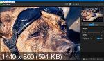Topaz Photoshop Plugins Bundle 10.2019 + Portable