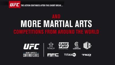 UFC Fight Night 162 720p WEB-DL H264 Fight-BB